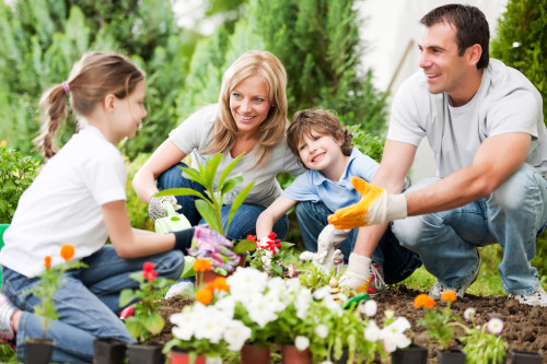 gardening for kids and parents