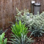 create strategic shaded areas for plants