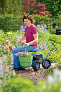 Combating Pain 10 Tools For Easier Gardening
