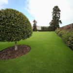 Perfect Cut by the best commercial zero turn mower