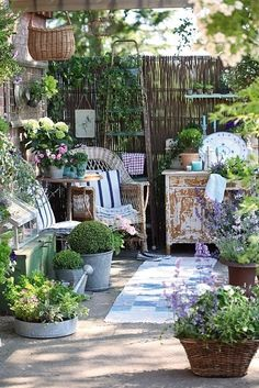 small garden sanctuary