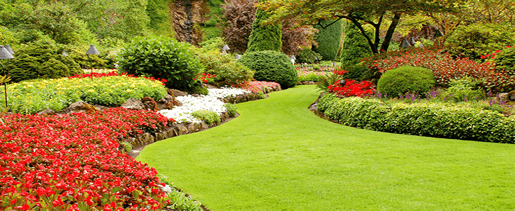 Your lawn is the first impression that you give to any visitor