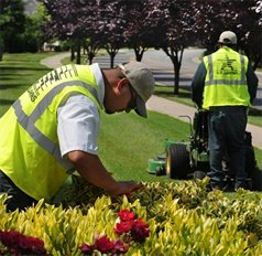 commercial landscapers at work