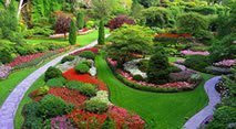 ideas for the best landscaping