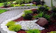 luxury landscaping Florida purple plants green plants
