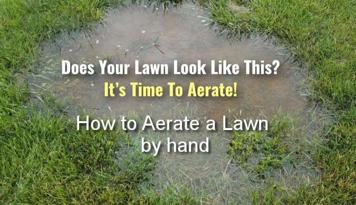 how to aerate lawn by hand