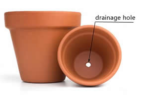 Terracotta pot with good drainage